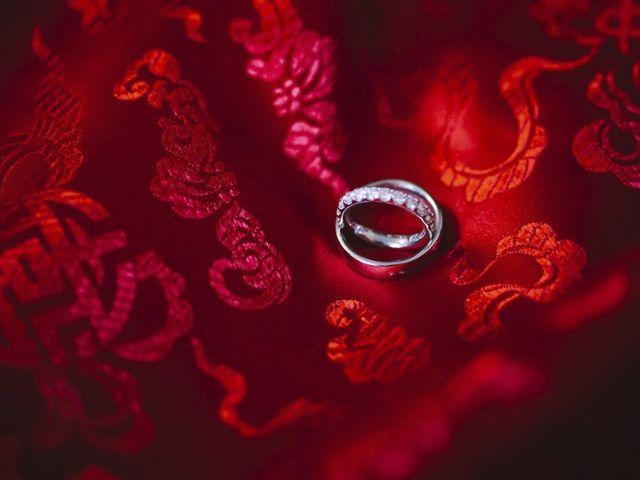 Le mariage de Alain et Christine à Chevry-Cossigny, Seine-et-Marne 15