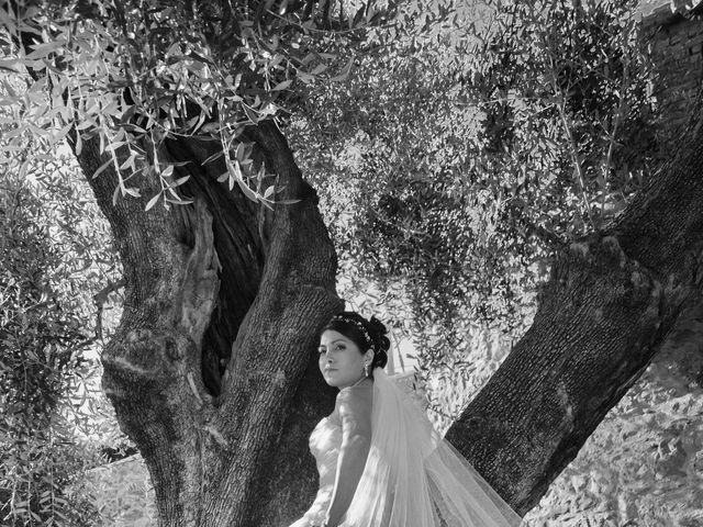 Le mariage de Anthony et Natali à Cantaron, Alpes-Maritimes 3