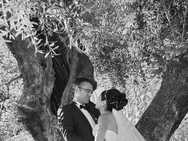 Le mariage de Anthony et Natali à Cantaron, Alpes-Maritimes 4
