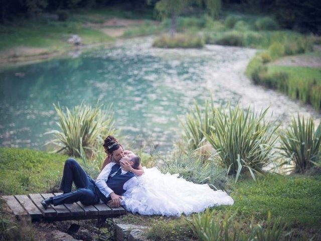 Le mariage de David et Vanessa  à Solliès-Ville, Var 15