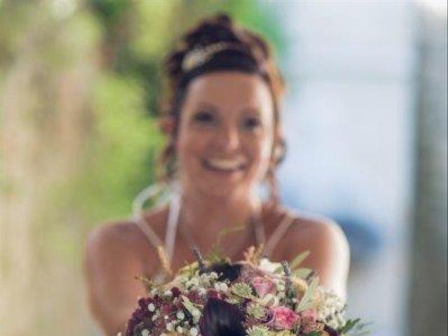 Le mariage de David et Vanessa  à Solliès-Ville, Var 27