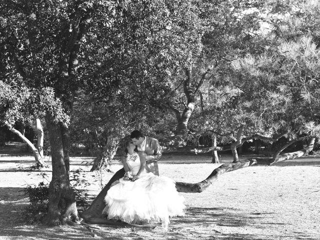 Le mariage de Alexandre et Céline à Callas, Var 27