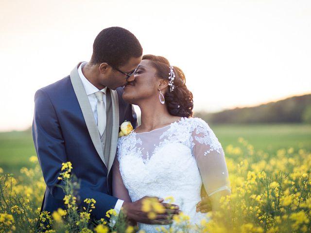 Le mariage de Ted et Bérénice à Lagny-sur-Marne, Seine-et-Marne 38