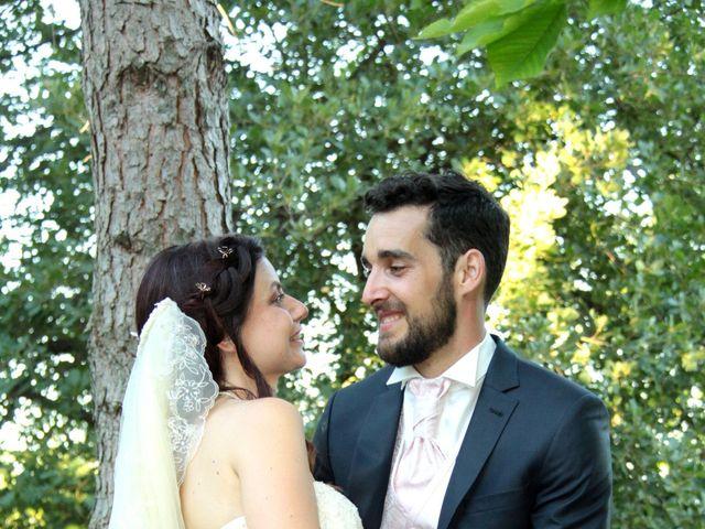Le mariage de Sébastien et Elodie à Nîmes, Gard 77