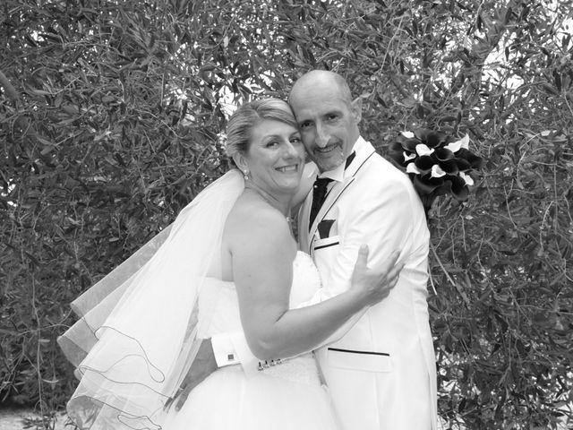 Le mariage de Alain et Laetitia à Bellegarde, Gard 26