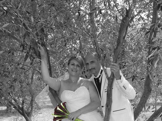 Le mariage de Alain et Laetitia à Bellegarde, Gard 28