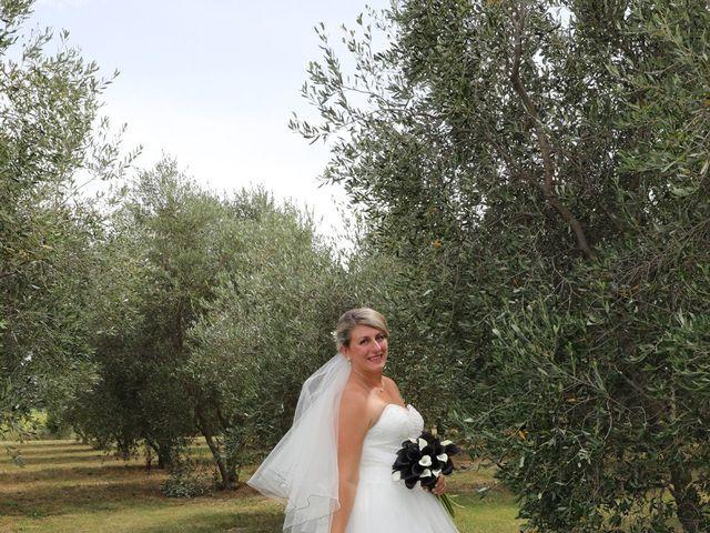 Le mariage de Alain et Laetitia à Bellegarde, Gard 35