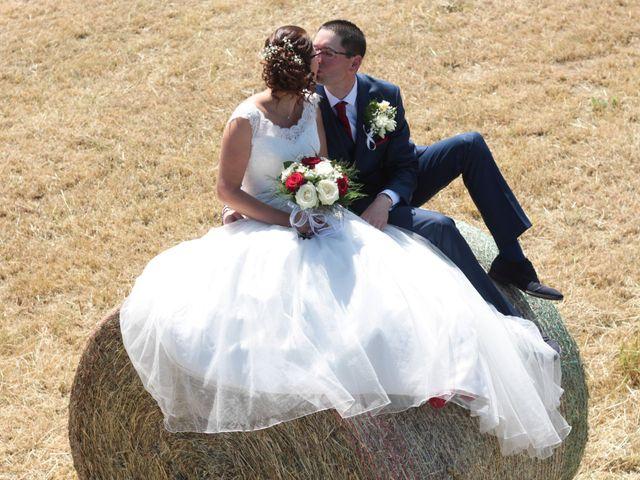 Le mariage de Loulou et Elodie à Hennezis, Eure 10