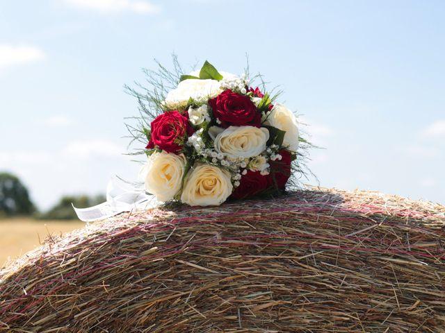 Le mariage de Loulou et Elodie à Hennezis, Eure 12