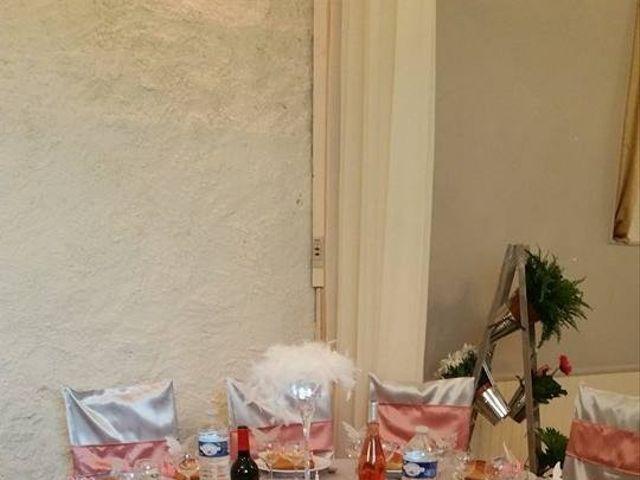 Le mariage de Sebastien et Tiffany à Langeais, Indre-et-Loire 14