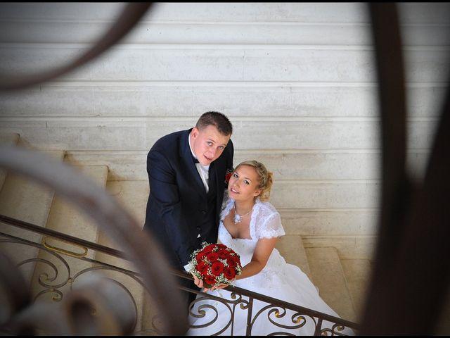 Le mariage de Quentin et Alicia à Saint-Fargeau, Yonne 33