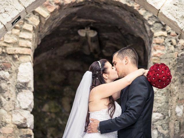 Le mariage de Pascal et Alexandra à Saint-Martin-du-Var, Alpes-Maritimes 27