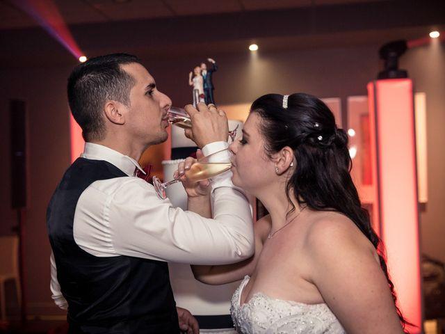 Le mariage de Pascal et Alexandra à Saint-Martin-du-Var, Alpes-Maritimes 45