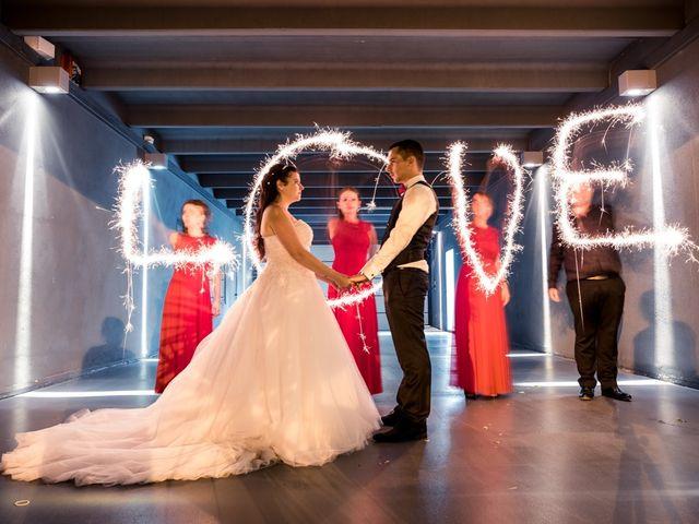 Le mariage de Pascal et Alexandra à Saint-Martin-du-Var, Alpes-Maritimes 48