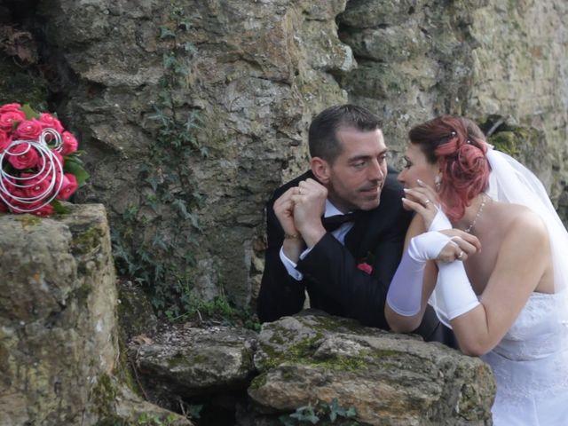 Le mariage de Nicolas et Severine à Santeny, Val-de-Marne 19