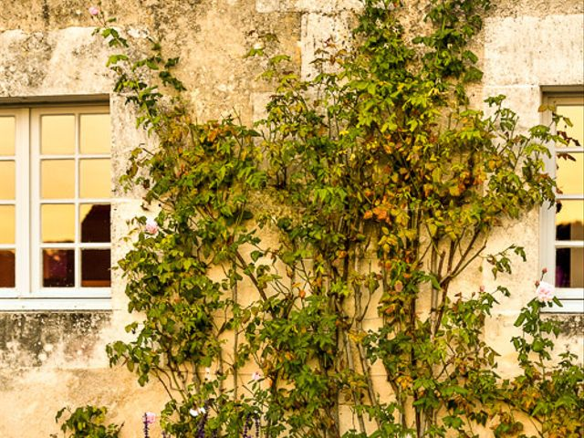 Le mariage de Dimitri et Marion à Échillais, Charente Maritime 50