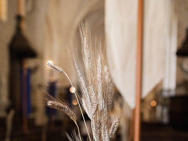 Le mariage de Guillaume et Diane à Beaulieu-sur-Loire, Loiret 11
