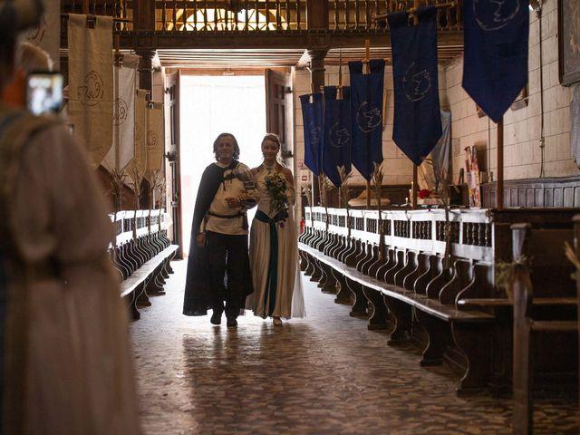 Le mariage de Guillaume et Diane à Beaulieu-sur-Loire, Loiret 16