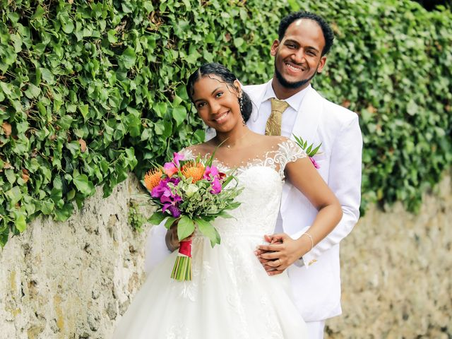 Le mariage de David et Ludmilla à Élancourt, Yvelines 39