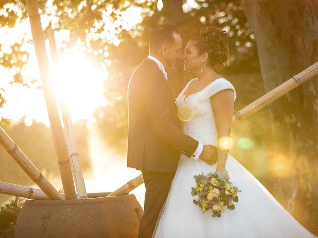 Le mariage de David et Nathalie à Trets, Bouches-du-Rhône 33