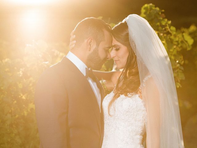 Le mariage de Pierre et Marine à Saint-Paul, Alpes-Maritimes 85