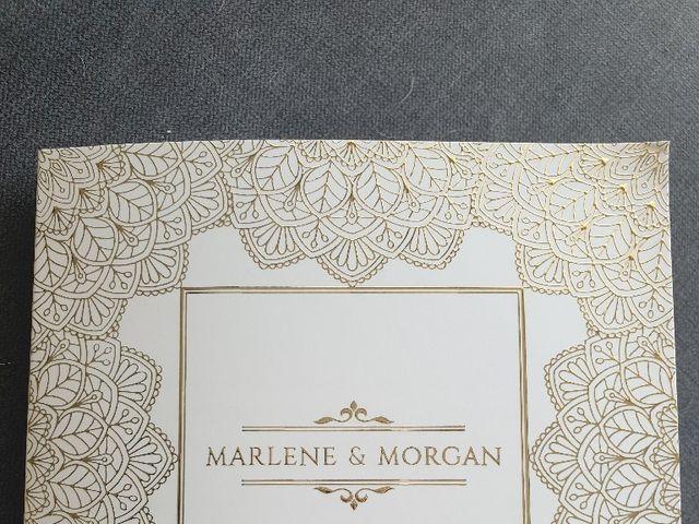 Le mariage de Morgan et Marlène  à Saint-Laurent-Nouan, Loir-et-Cher 3