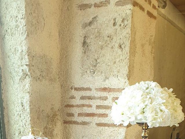 Le mariage de Morgan et Marlène  à Saint-Laurent-Nouan, Loir-et-Cher 9