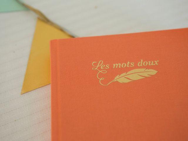 Le mariage de Christophe et Lucille à Portet-sur-Garonne, Haute-Garonne 27