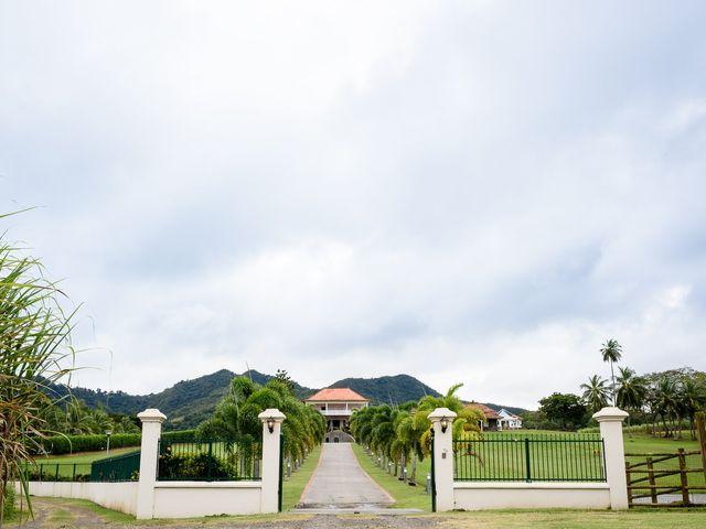 Le mariage de Rodny et Cannelle à Les Trois-Îlets, Martinique 35