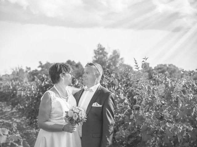 Le mariage de Dominique et Corinne à Gignac, Hérault 14