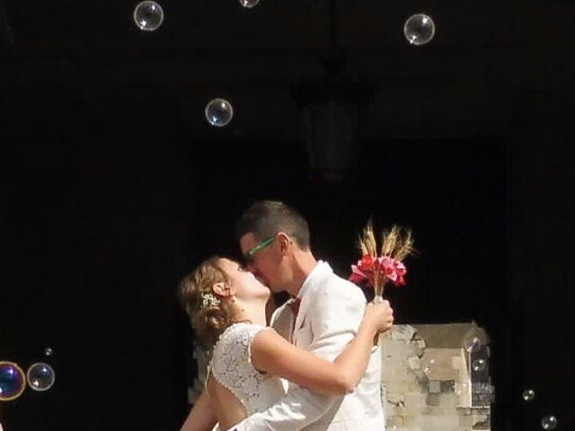 Le mariage de Vincent  et Cécile à Castres, Tarn 14