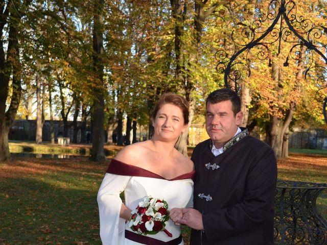 Le mariage de Christophe et Sabine à Viarmes, Val-d'Oise 8