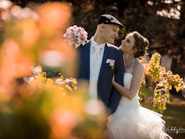 Le mariage de Stéphane et Alizée à Chambéry, Savoie 20