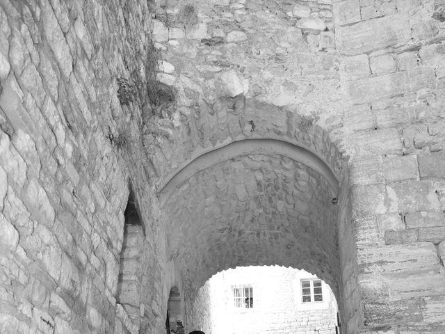 Le mariage de Christophe et Aurelie à Vézénobres, Gard 9