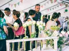 Le mariage de Amélie et Frédéric 1