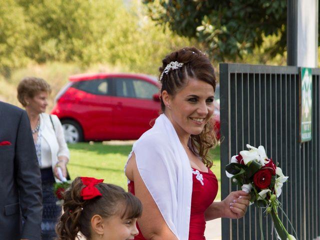 Le mariage de Sébastien et Véronique à Saint-Laurent-du-Var, Alpes-Maritimes 7