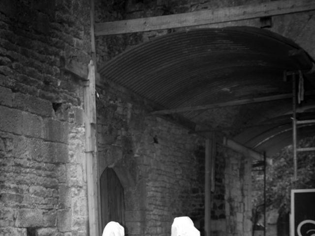 Le mariage de Cyril et Elise à Montbard, Côte d'Or 15