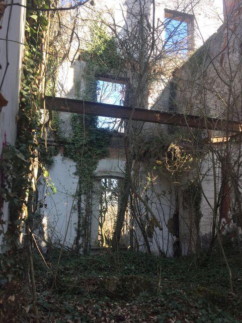 Les prestataires de Perrine à Saint Romain le Puy 3