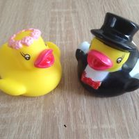 Mes petits canards d'amour... - 1