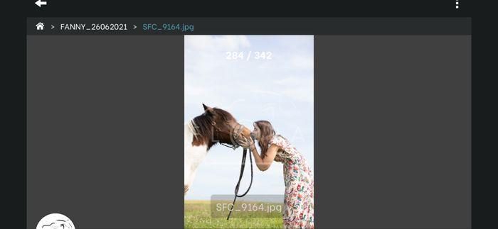 Séance photo avec vos animaux ? 11