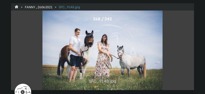 Séance photo avec vos animaux ? 13