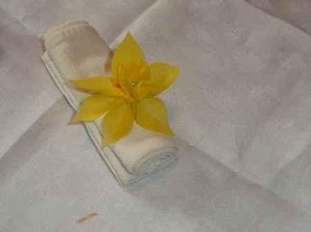 Coulant de serviette