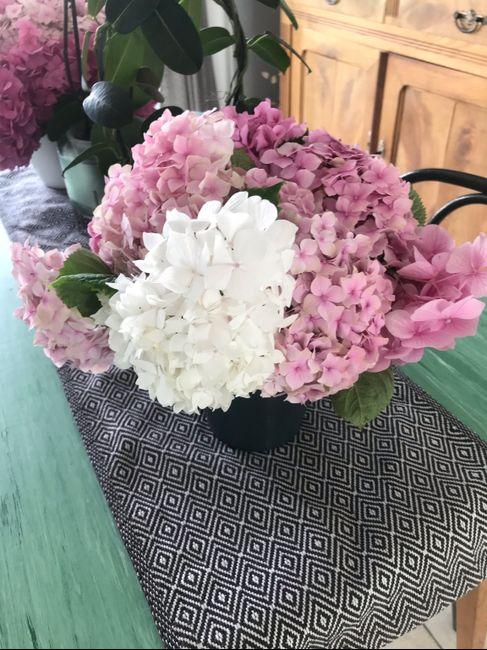 Fleurs stabilisées 2