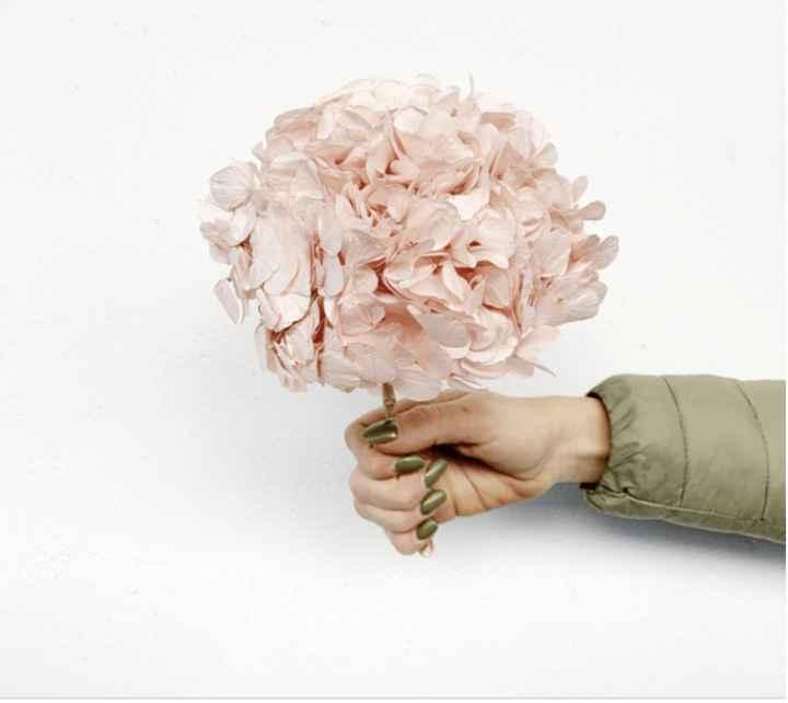 Fleurs stabilisées 3