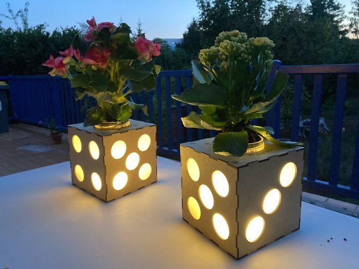 Centres table avec plantes au lieu de fleurs coupées 3