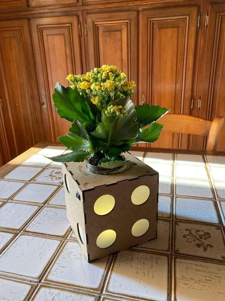 Centres table avec plantes au lieu de fleurs coupées - 1