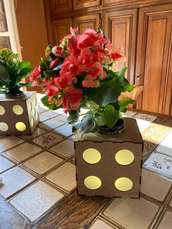 Centres table avec plantes au lieu de fleurs coupées - 2