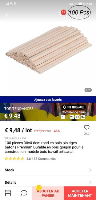 Baton de fibre optique 6