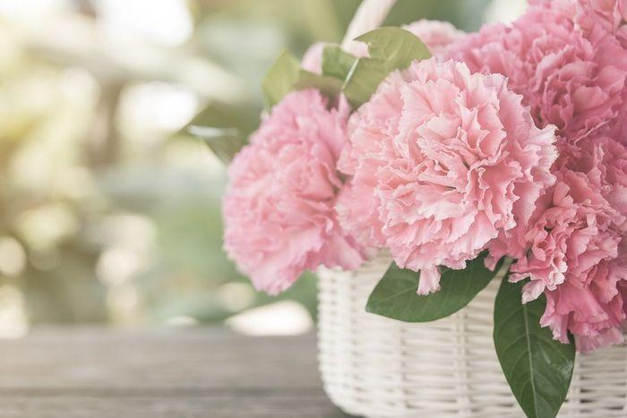 Les 6 fleurs les + économiques pour ton mariage 💐 1