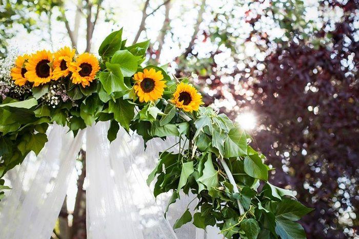 Les 6 fleurs les + économiques pour ton mariage 💐 3